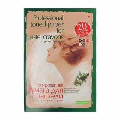 Бумага и картон Альт 1113871 Папка для пастели, гуаши и темперы