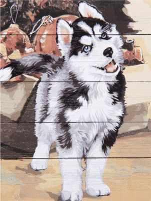Раскраска по номерам DALI WS057 Хаски
