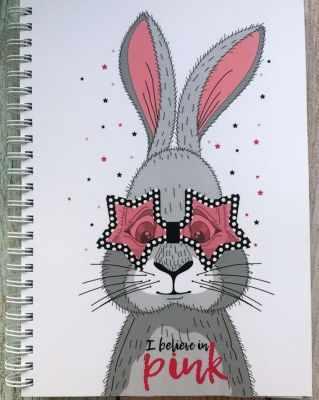 Книга Bunny Планер