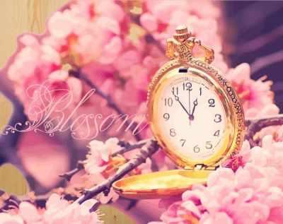 DER014 Время цветения сакуры - Раскраски по номерам «Color Kit»