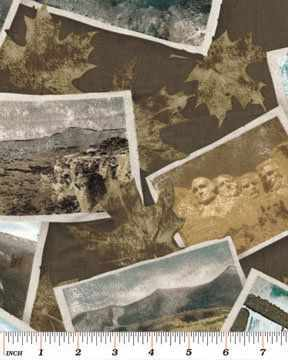 Ткань США Ткани 431 (50*55 см) ткань сша ткани 6850 50 55 см