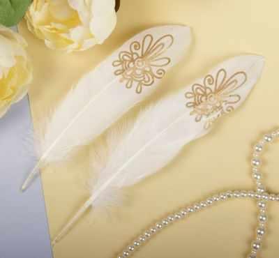 2057929 Набор перьев для декора
