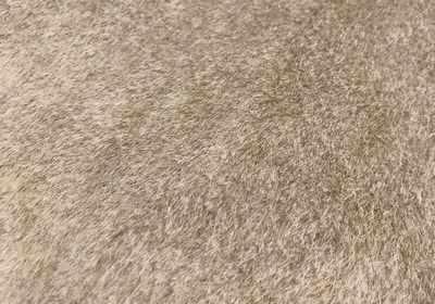 25856 Мех  Элит  (ворс 8 мм), 20% хлопок/80% акрил, (45 см*50 см), цв. какао - Ткани