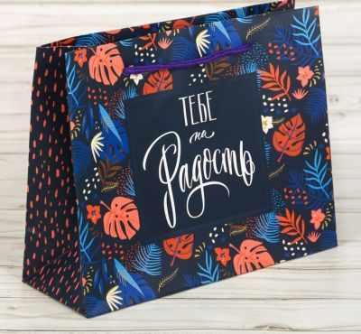 Фото - Подарочный конверт Дарите Счастье 2640199 Пакет подарочный «Тебе на радость» пакет подарочный единорог на пончике а5 16 х 24 х 8 см