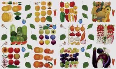 Бумага для декупажа KREUL KR-B8102 Декупажные карты 33*48 см Фрукты и овощи
