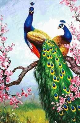 52-6272-НВ В цветах сакуры  набор для вышивания (А. Токарева) - Наборы для вышивания Александры Токаревой