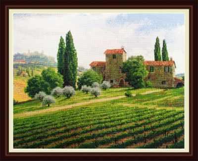 OLanTA / VN-038 Виноградники