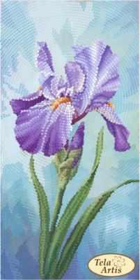 Основа для вышивания с нанесённым рисунком Tela Artis ТМ-114 - Садовые зарисовки. Ирис - схема для вышивания (Tela Artis)