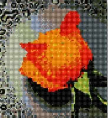 71003-01 Оранжевая роза