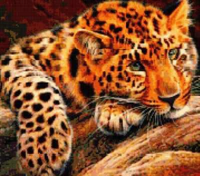 Купить со скидкой 50183 Леопард