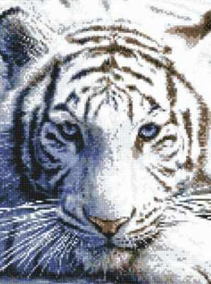 901011 Белый тигр