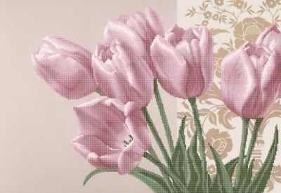 ЗПК-020 Тюльпаны розовые