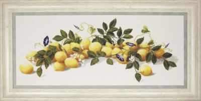 М-300 Лимоны - чм