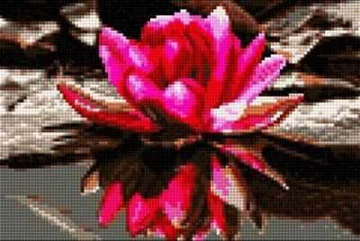 Набор для вышивания Anya Алмазная вышивка 30359-Х Лотос в пруду