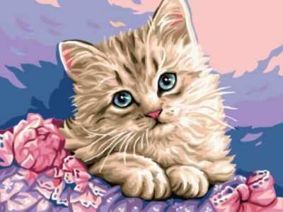 Набор для рисования по номерам Цветной ex5281 Милый котенок printio холст 30x40