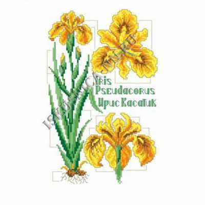 Набор для вышивания Искусница м8170 Желтый ирис
