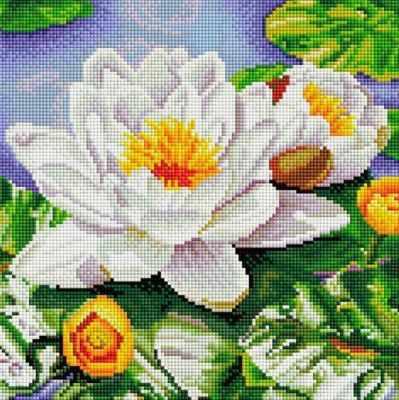 Алмазная мозаика Белоснежка Алмазная вышивка 311-ST-S Нимфея озерная светильник подвесной toplight laurel tl1201h 01bk