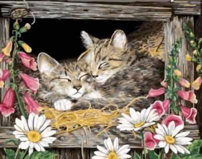 Набор для рисования по номерам Цветной gx5606 «Котята в гнезде» набор для рисования по номерам цветной бабочка красный монарх 20 x 30 см
