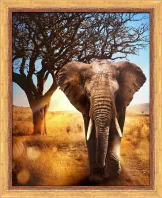 Алмазная мозаика Алмазная живопись Алмазная вышивка Африканский слон (АЖ-1783) - картина стразами