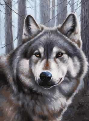 Набор для рисования по номерам Белоснежка 3090-CS Волк - раскраска (Белоснежка)