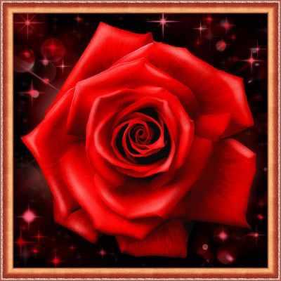 Алмазная мозаика Алмазная живопись Алмазная вышивка Сверкающая роза (АЖ-1785) - картина стразами