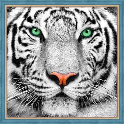 Алмазная мозаика Алмазная живопись Алмазная вышивка Портрет белого тигра (АЖ-1788) - картина стразами