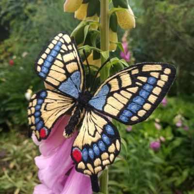 Набор для вышивания Гладкий мир Брошь-бабочка