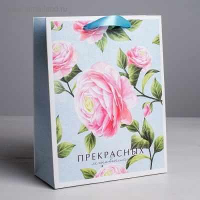 Подарочный конверт Дарите Счастье 4569558 Пакет ламинированный вертикальный «Прекрасных мгновений», MS