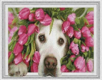 Набор для вышивания Molly Алмазная вышивка KM0195 Лабрадор в тюльпанах