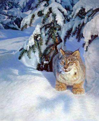 Набор для рисования по номерам Цветной gx5754 «Рысь в снегу»