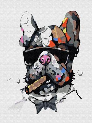 Набор для рисования по номерам Цветной ex5322 Брутальный пес