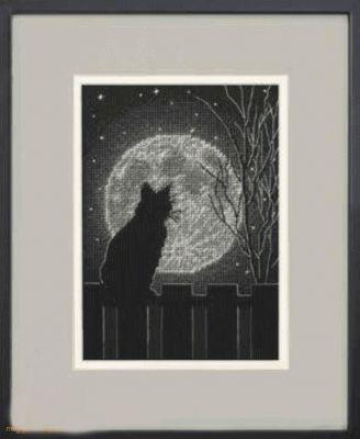 65212 DMS Лунный черный кот